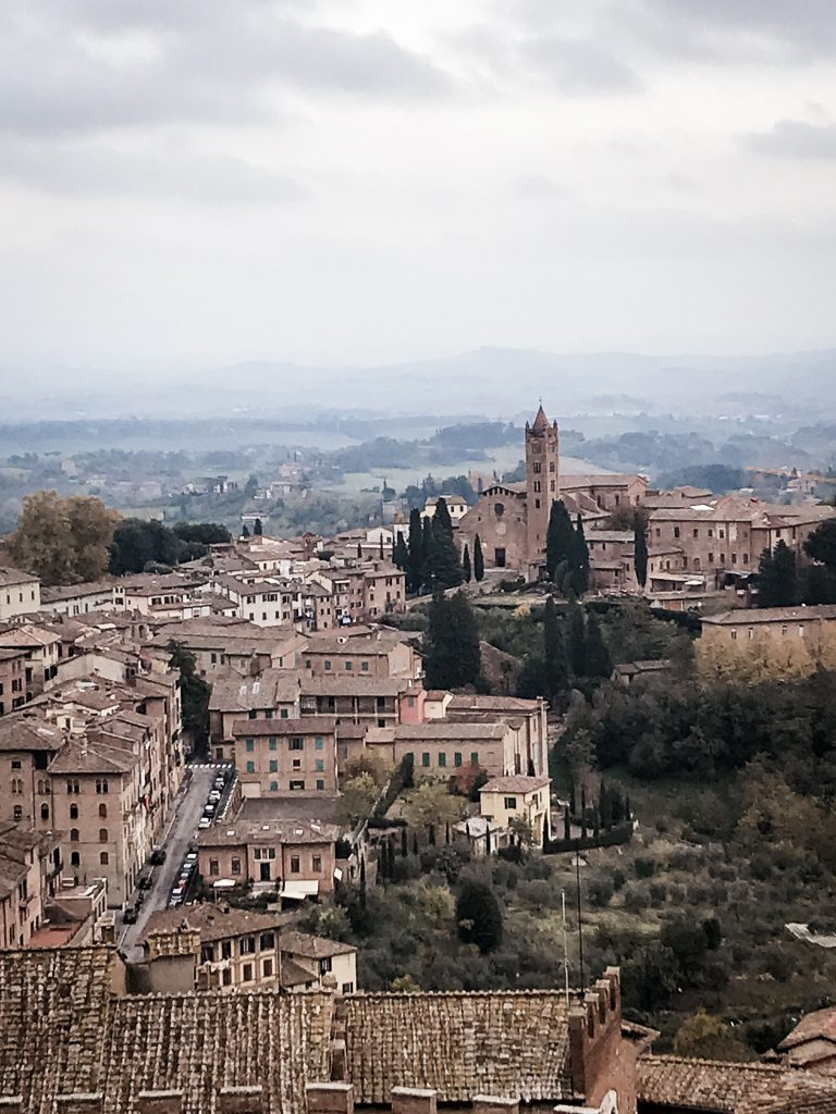View from the Duomo in Siena Italy